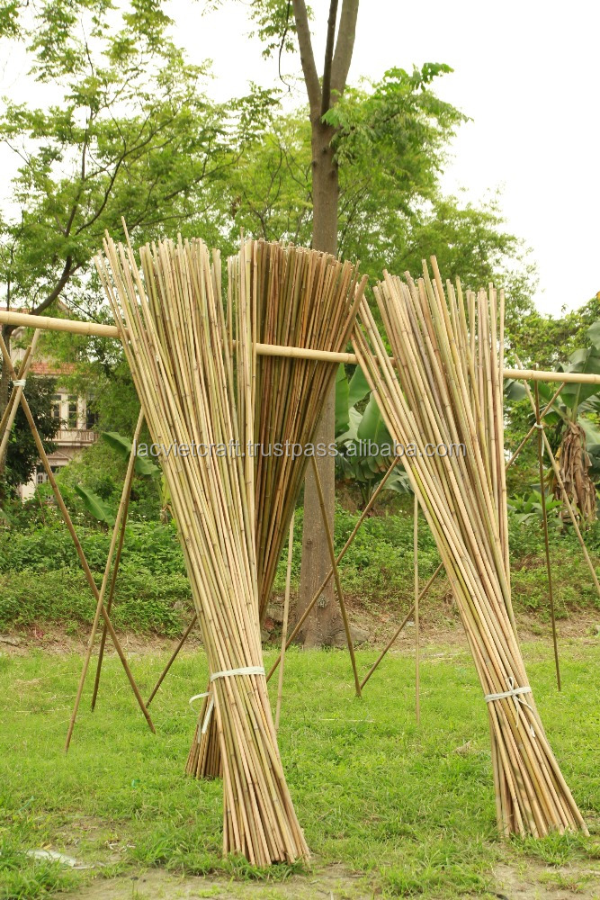 Best selling high quality natural bamboo pole from vietnam