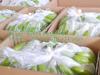 Fresh Cavendish Banana, Fresh Banana in Gimex Viet Nam 2015