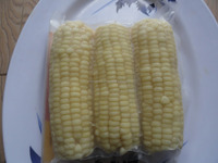 High Quality Frozen White Sweet Corn from Vietnam