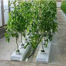 Grow Bag for organic vegetables cultivation
