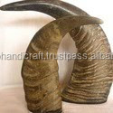 Buffalo Horn