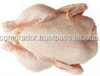 BRAZILIAN HALAL FROZEN WHOLE CHICKEN TO UNITED ARAB EMIRATES!!! TOP SUPPLIERS !!!