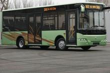 TATA I-VAN A10C30