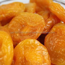 Turkish Sun Dried Apricots - Best Quality