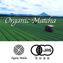 Precious and Reliable safety healthy japanese tea at reasonable prices , OEM available