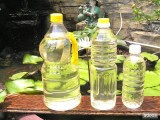 Refined and crude rapeseed oil and other cooking oils