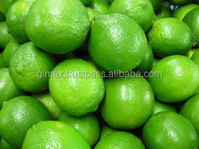 Fresh seedless lime export to dubai