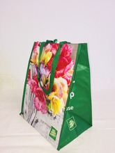 Vietnam's Eco Friendly Woven/Non Woven Bags, Plastic Bag