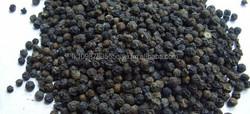 Sri Lanka Black Pepper Dealer | Exporter