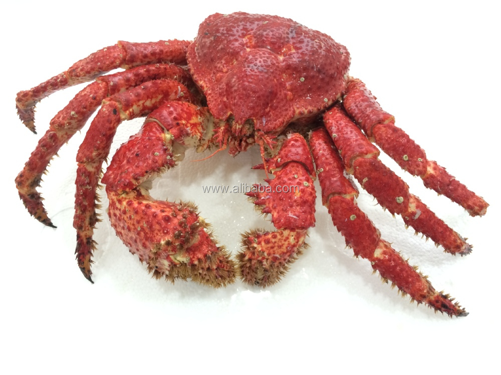Lucky Red Snow Crab Precooked.JPG