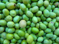 Black and Green Olives Whole or Pitted