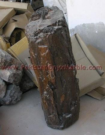 petrified-wood-rough-02.jpg