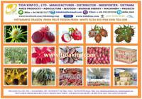 RED DRAGON FRUIT - NATURAL 100% PURE VIETNAM - IQF USED ALOEVERA - BIRD CHILI - MULBERRY - TIDA KIM ORIGIN PRODUCTION