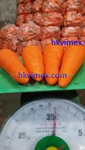 HOANG KIM VIETNAM 's Fresh Carrots Very Sweet