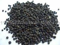 BLACK PEPPER / WHITE PEPPER / SPICE / CLOVE / GARLIC / GINGER
