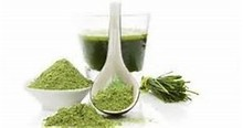 Superior Quality Wheat Grass Powder for supply