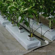 Best quality Coco Peat Grow Bags for spain from india
