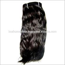 laindia primas la cutícula del cabello