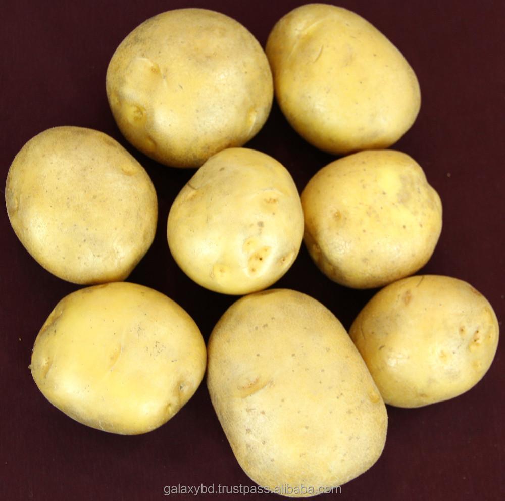 potato processing company in bangladesh