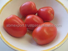 Indian Tomatoes
