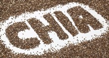 Certified Organic Raw Chia Seeds from South America !!! Top Supplier !!!