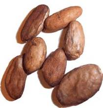 Certified Organic Cacao beans/new season's raw cacao/cocoa beans/nibs/seeds