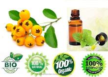 Seabuckthorn Seed Oil sale offer