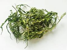 Finest Organic Hemp CBD Buds Flowers & Leaves Without Seeds Tea