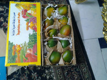 sweet mango from Egypt