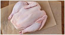 Halal Grade A Brazilian Frozen Whole Chicken for Sale