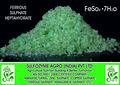 Sulfate ferreux heptahydraté( feso4.7h2o)