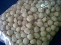 elled Macadamia nuts price/ bulk Macadamia for sale