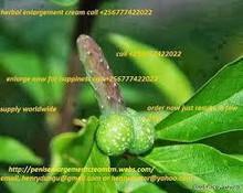 La nuova crema di ingrandimento del pene a base di erbe, pillole, chiamare +256777422022 e olio