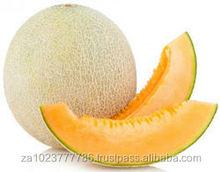 Fresh Melon & Cantaloup GRADE a FOR SALE HOT SALES