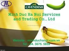 Banana Type and Cavendish Banana Variety premium cavendish banana in MDH VIETNAM