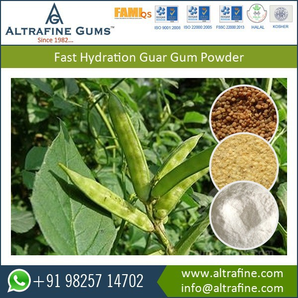 guar gum research paper Paper industry such as the colloidal solids present in guar gum guar has up to eight times the research has revealed the water-soluble fiber in it may help.