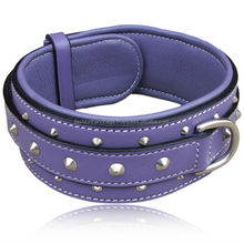 Heavy Dog Leather Collar & Leashes,purple leather dog collar