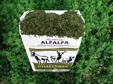 Non GMO Alfalfa Hay- Chaffhaye
