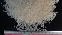 Cheap Price Vietnam Camolino Rice ( Sales@duongvuvn.com)