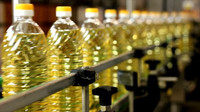 Grade A Refined canola oil at Moderate Prices