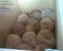 Fresh mature coconut fruit