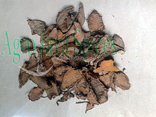 Galangal Roots/Lengkuas