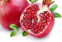 Fresh fruit export for uk