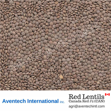 Red Lentils - Canada Red#2 (CAN)