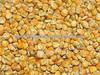 /p-detail/alimentaci%C3%B3n%C2%A0animal-de-ma%C3%ADz-400001480196.html