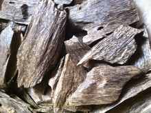 Agarwood Price dry chips from Vietnam Aquilaria Crassna Plantation