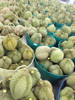 FRESH FRUIT GOLDEND PILLOW DURIAN FROM AEC- THAILAND
