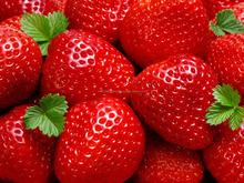 frozen fresh strawberry in best price