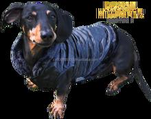 Dog Warm Clothes - Regal Jacket