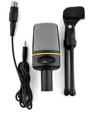 Audio Professional Condenser Microphone Mic Studio Sound Recording With Shock Mount